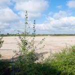 Seewinkel: das nächste Baugebiet kann starten